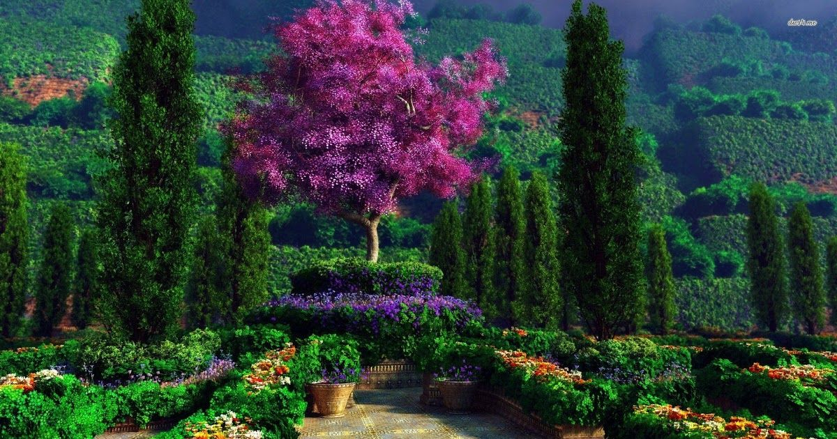 16 Full Hd Desktop Nature 1920x1080 Hd Wallpaper Download Garden Wallpapers 1920x1080 Full Hd 1080p Desktop Ba In 2020 Beautiful Gardens Gardening Photography Nature