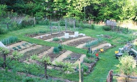 spring in the hillside vegetable garden south west virginia terraced beds