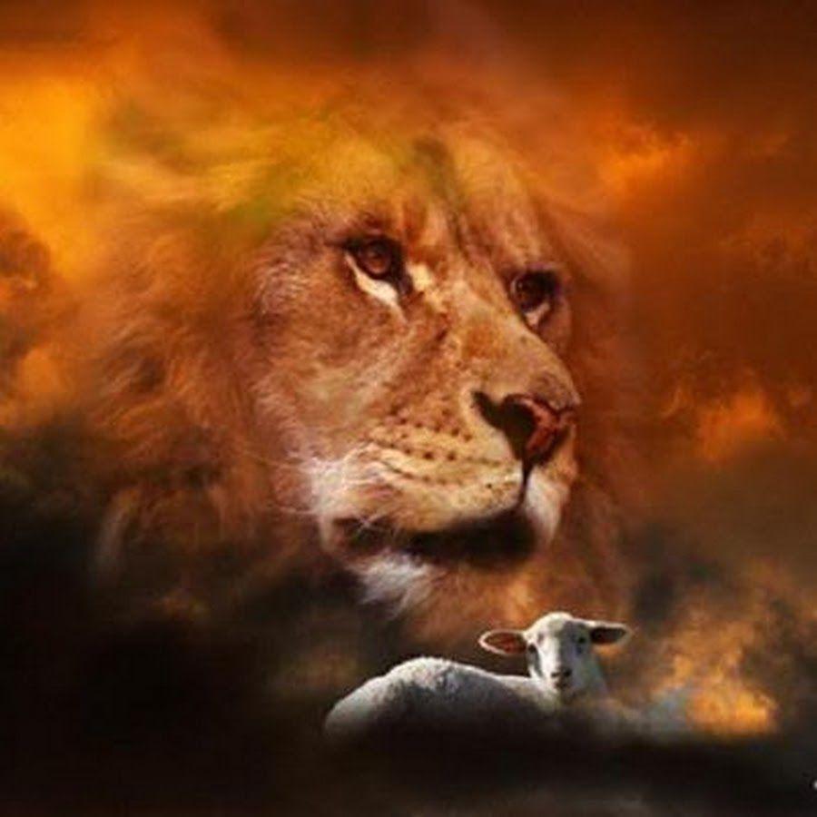 Jesús El Cordero y el Leon...El Cordero es el Hijo de Dios ,Cristo ...
