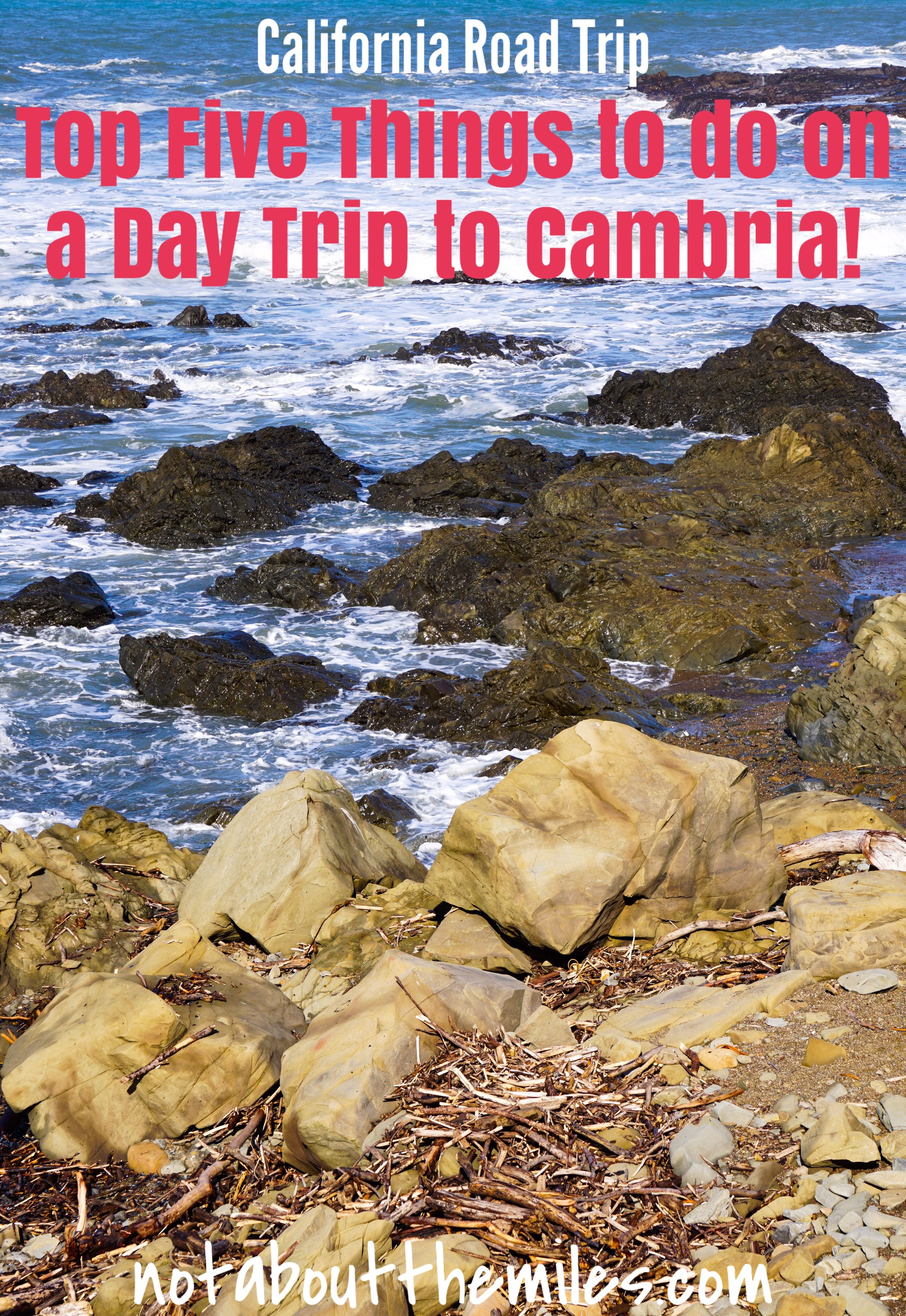 Top Five Things To Do On a Day Trip To Cambria   California travel road trips, Day trips ...