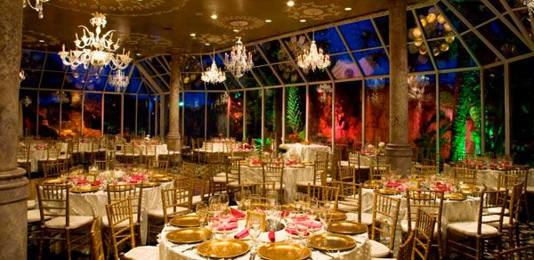 Absolutely Delicious Catering Caterers For Weddings Corporate Social Events More San Antonio Texas Crystal Room San Antonio Social Event Planning