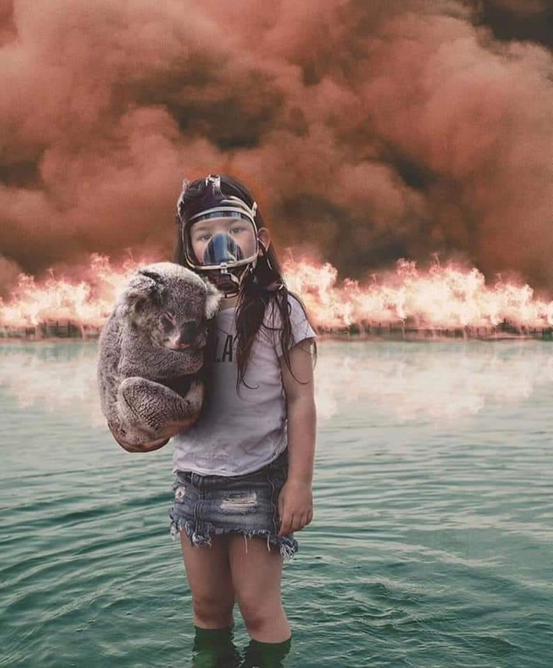 Pin on Australia Bushfires