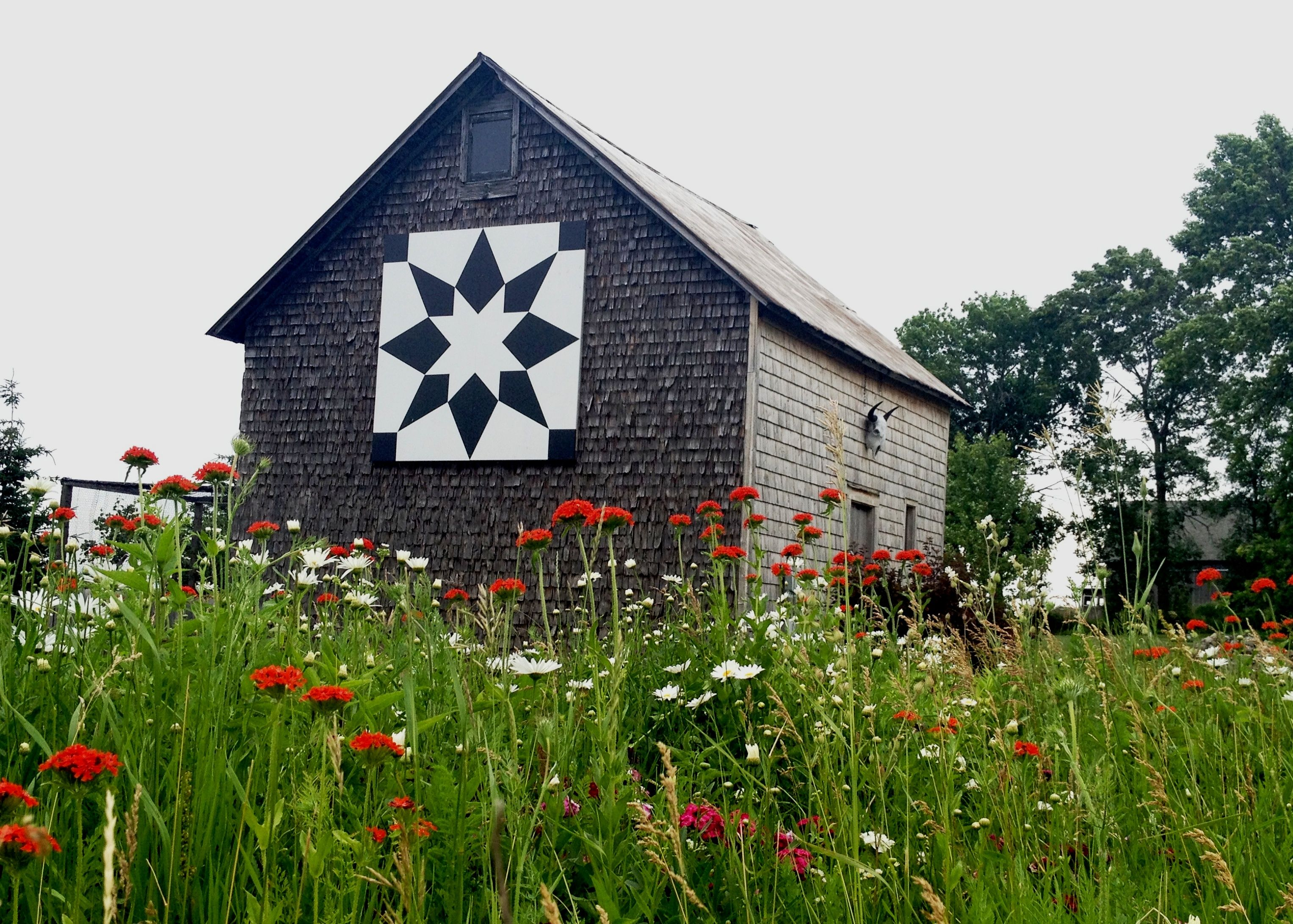 Our Agricultural Art Barn Quilts Of Door County Painted Barn Quilts Barn Quilts Barn Quilt Designs