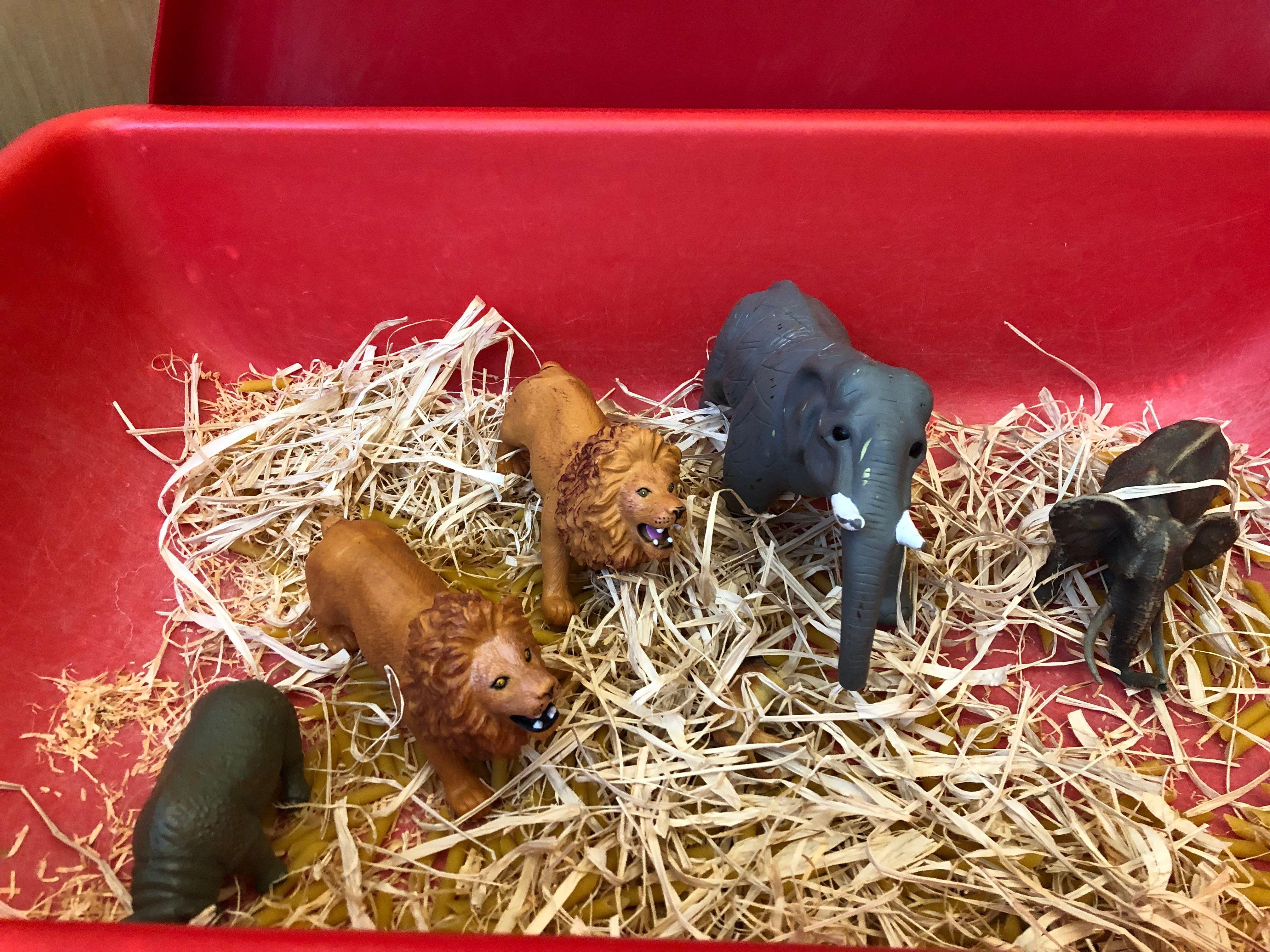 Animals And Hay Sensory Table