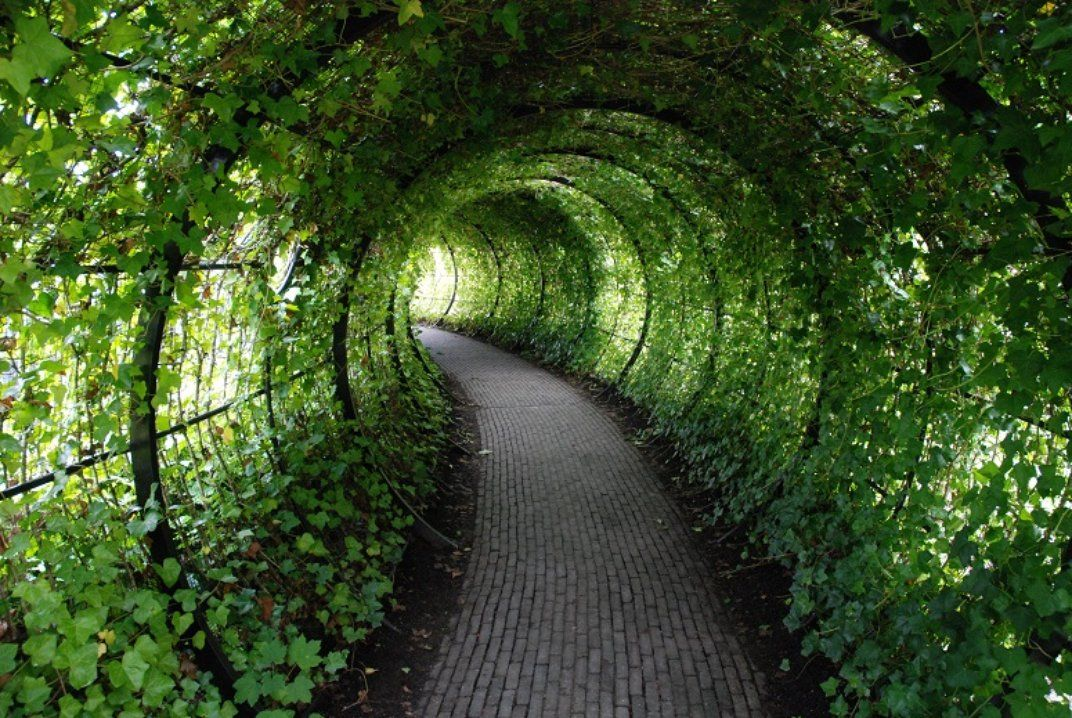 garden - Cerca con Google
