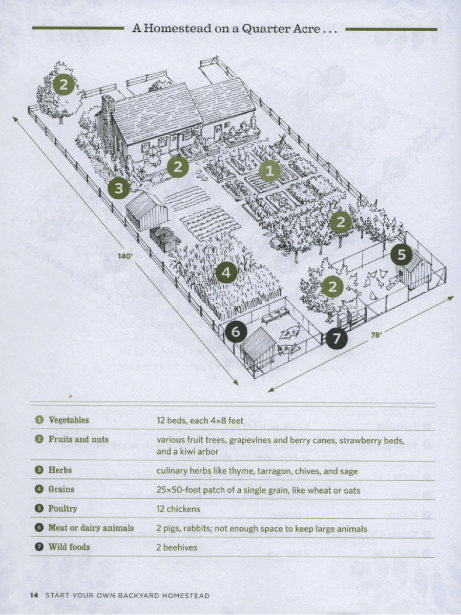 Homestead Garden Layout - HOME INSPIRATION on homestead barn layout, 5 acre homestead layout, 1 4 acre homestead layout, homestead water filtration, backyard homestead layout, best homestead layout, homestead garden layout, small homestead layout, mini farming garden layout, homestead farms and gardens, homestead golf course layout,