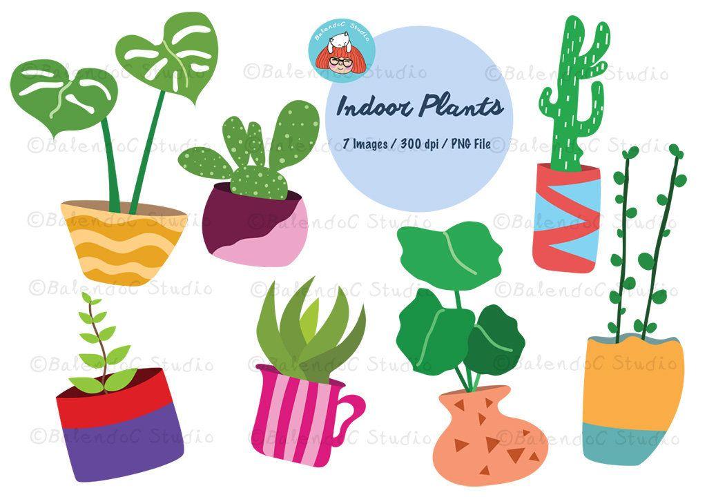 Plant Clipart Indoor Plant Clipart Color Clipart Houseplants Vector Clipart Potted Plant Illustrations Instant Download Inplb1