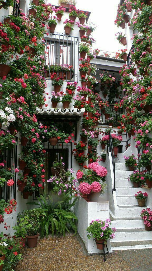 Pin de guisela alvarez en entre flores pinterest for Jardineria al aire libre casa pendiente