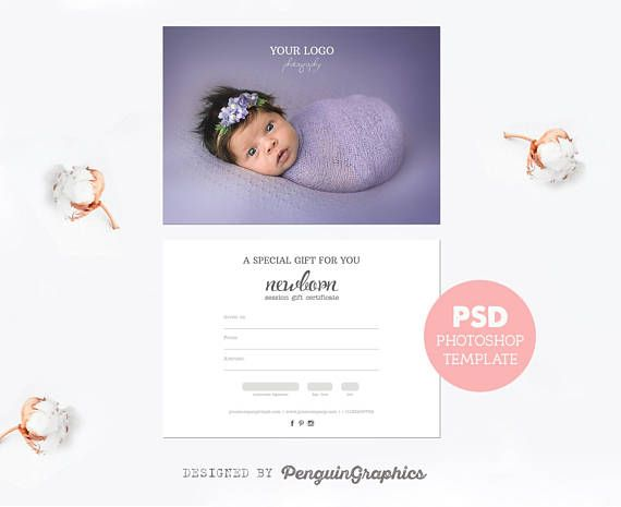 Gift certificate template Photography mini session gift card - gift card certificate template