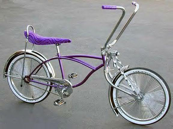I Literally Just Bought This Bike Biking Pinterest