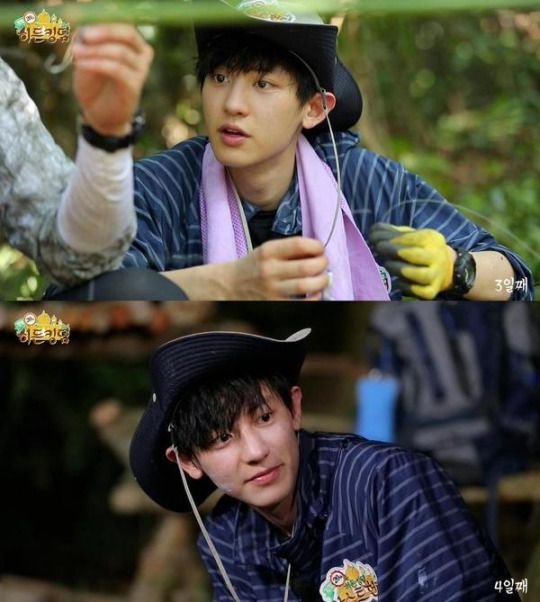 Law of the Jungle| Chanyeol | Exo Chanyeol | Chanyeol, Law of the