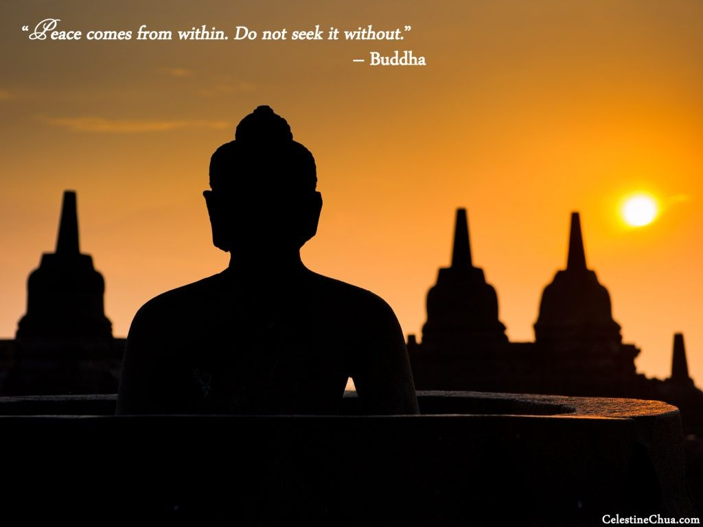 Pin By Clari Mompremier On Serenity Best Buddha Quotes Inspirational Quotes With Images Buddha