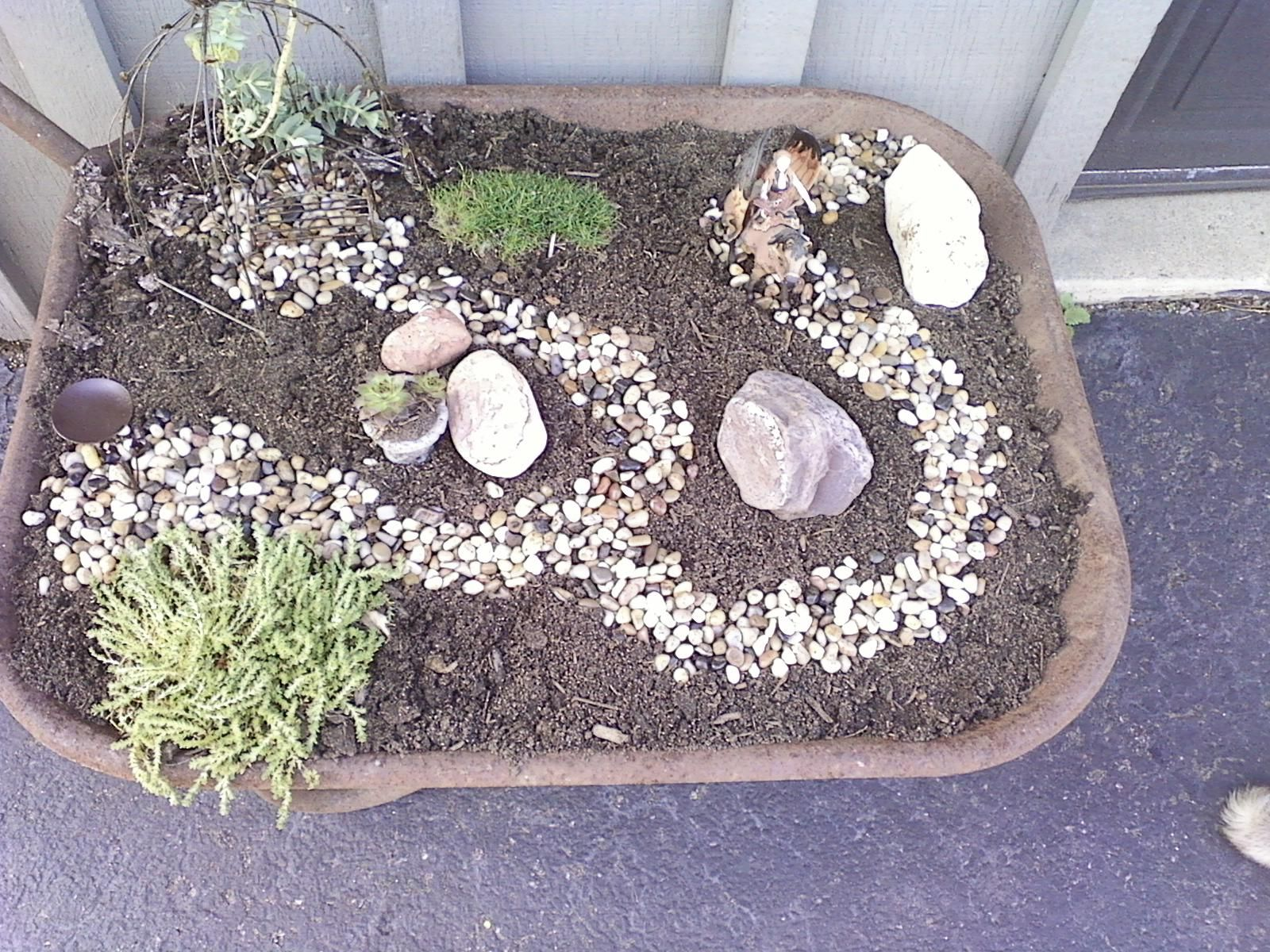 my first attempt at a fairy garden