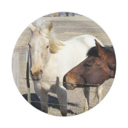 Two Horses Paper Plates - animal gift ideas animals and pets diy customize  sc 1 st  Pinterest & Two Horses Paper Plates - animal gift ideas animals and pets diy ...