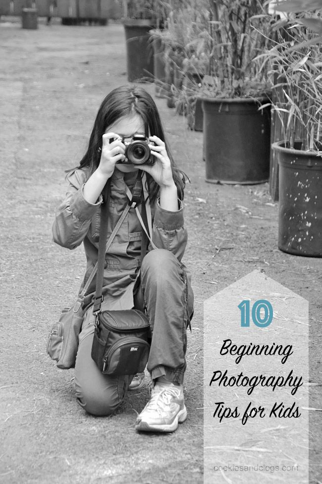 10 Beginning Photography Tips for Kids (and Adults) Cookies