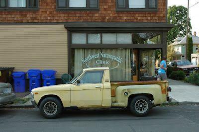 Van  Luv El Camino 1979 Chevrolet Exterior Color Paint Truck Brochure Guide