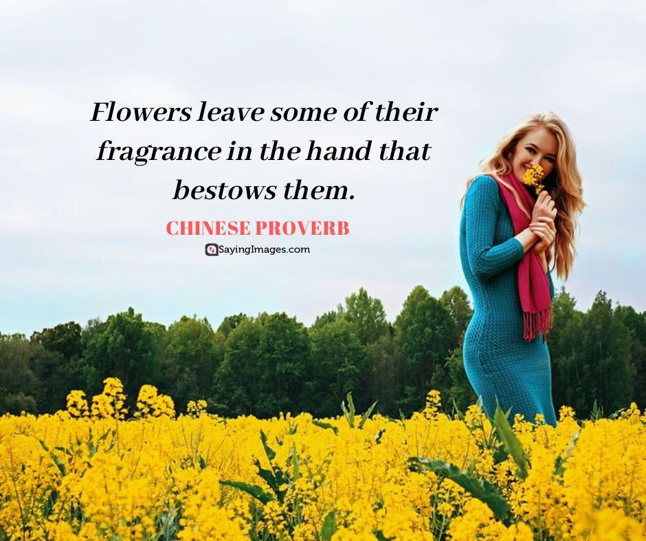 """""""Happiness blooms from within"""" daisy flowers quote"""