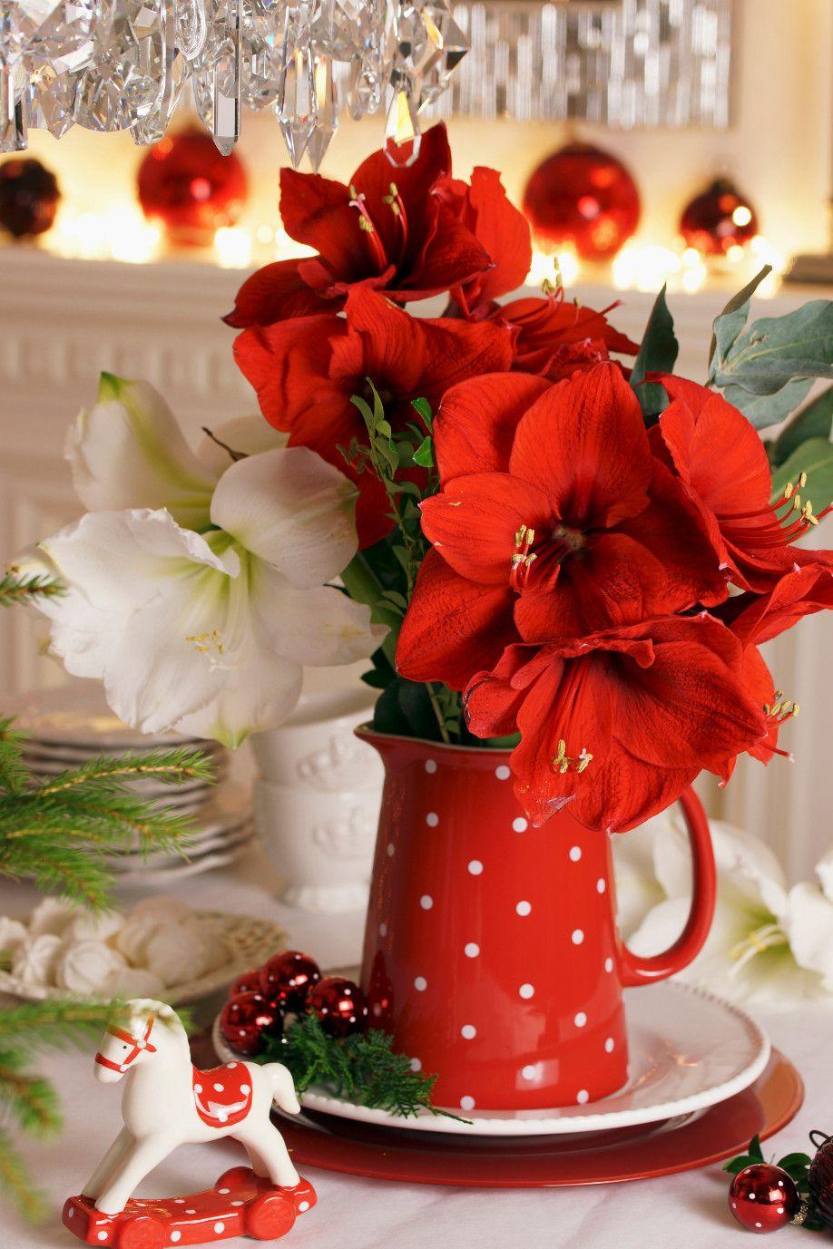 Winterliche blumenarrangements im westwing magazin amaryllis pinterest - Baum dekorieren ...