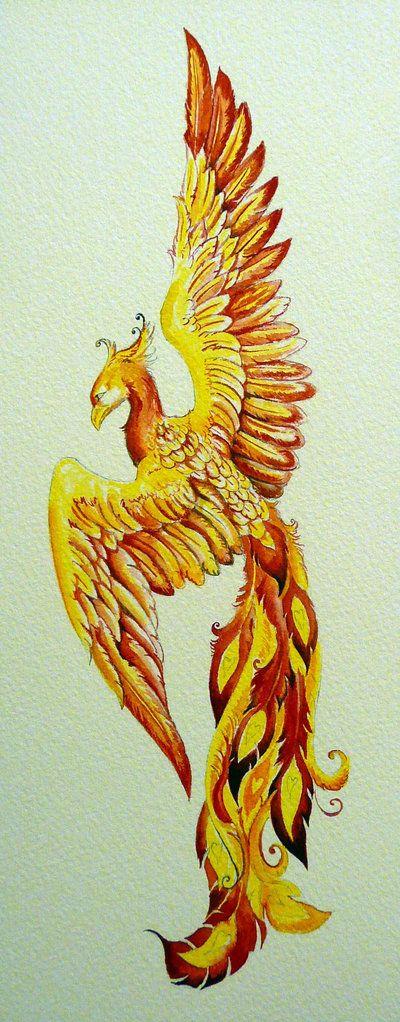 Pin By Kylee Christensen On Tattoos Phoenix Bird Tattoos Bird Drawings Phoenix Tattoo