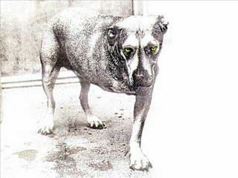 Marbar Song of the Day 10 Artist: Alice in Chains Track: God Am Album: Alice In Chains