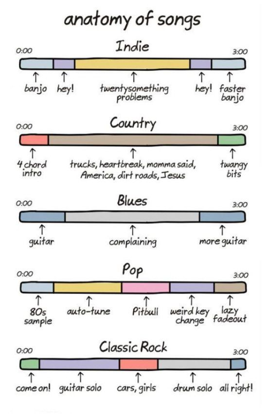 Anatomy of a song (found on the chive) | Music = Life | Pinterest ...