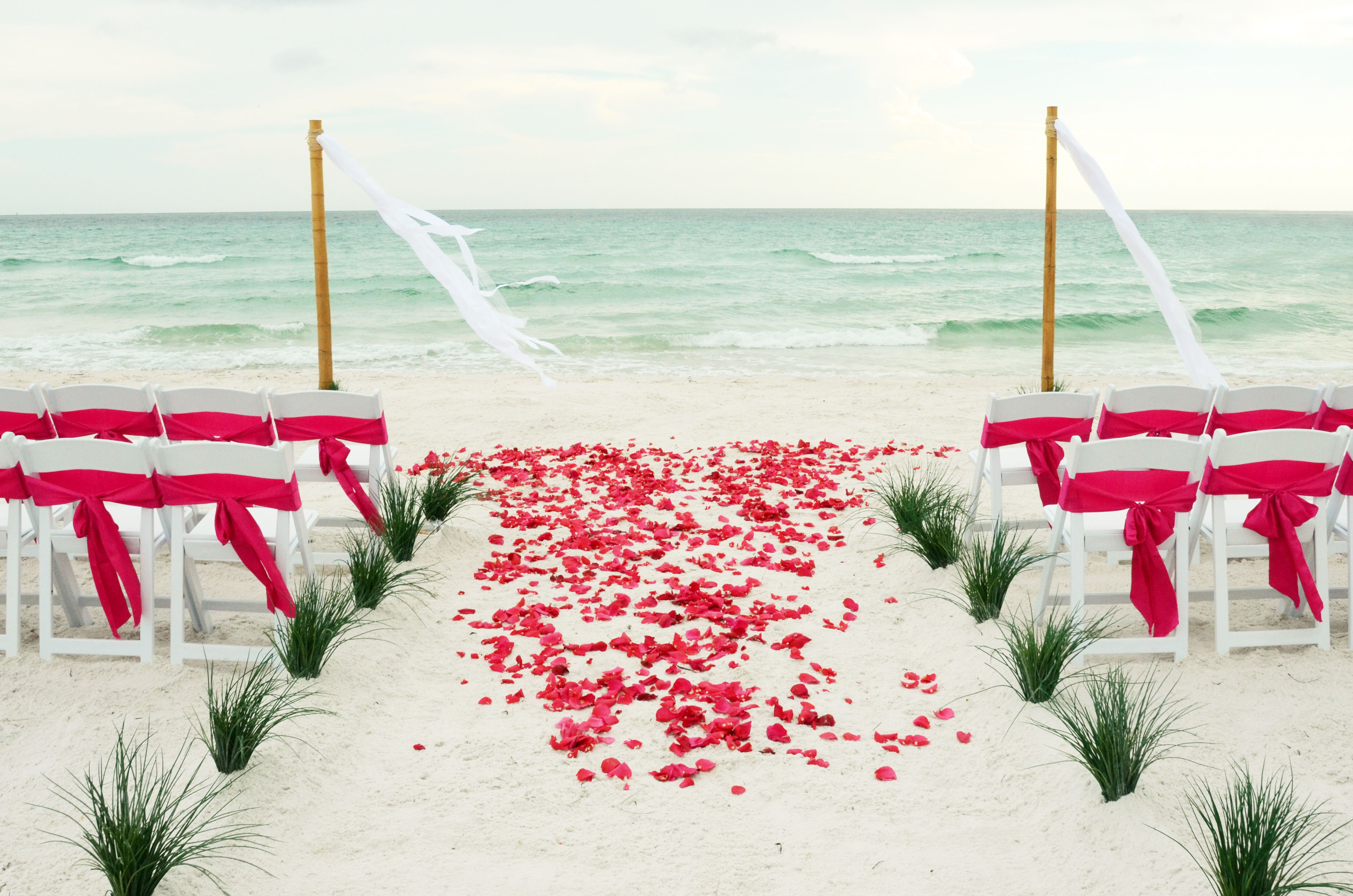 Bamboo Pole Streamers with Hot Pink rose petal aisle