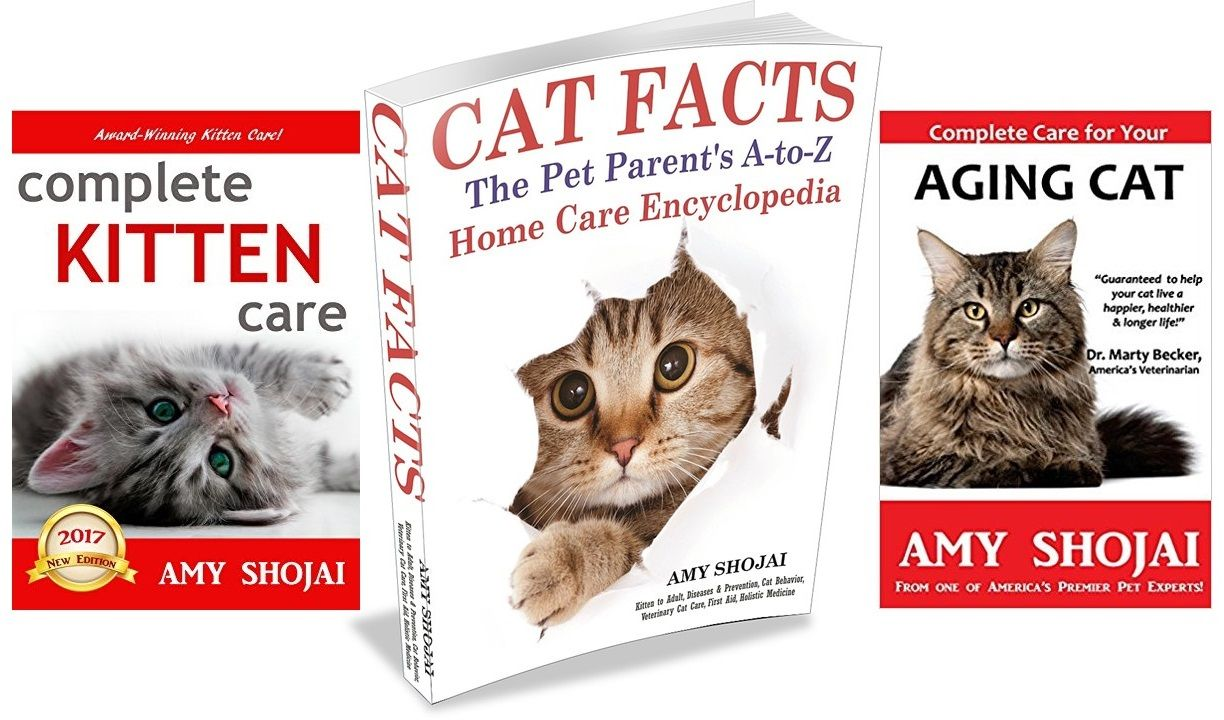 Cat Library Give Away Enter Here Http Amyshojai Com Cat Book Library Give Away Lucky 256 Cat Books Cats Pet Parent