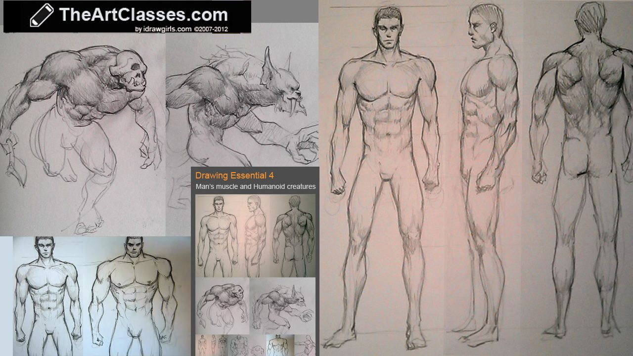 how to draw male figure, body variations and humanoid creatures, Muscles