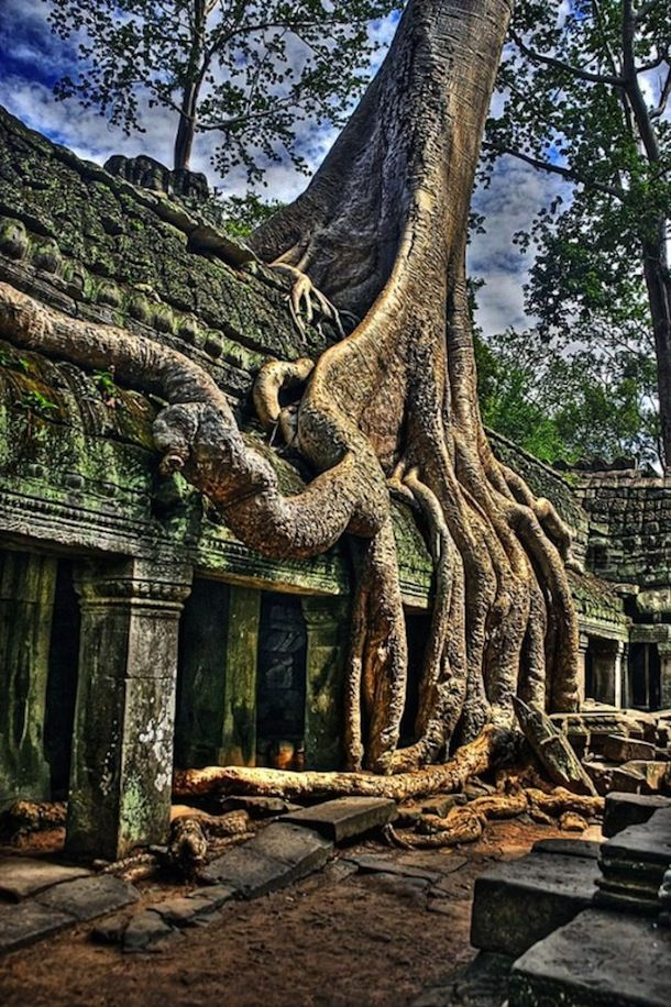 Angkor Wat, Cambodia. Best Destination | Fun Trip | DIY Tutorial | Save Money on trips | Cheap Destination