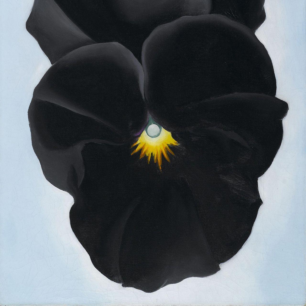 Jimlovesart Georgia Okeeffe Black Pansy 1927 Art