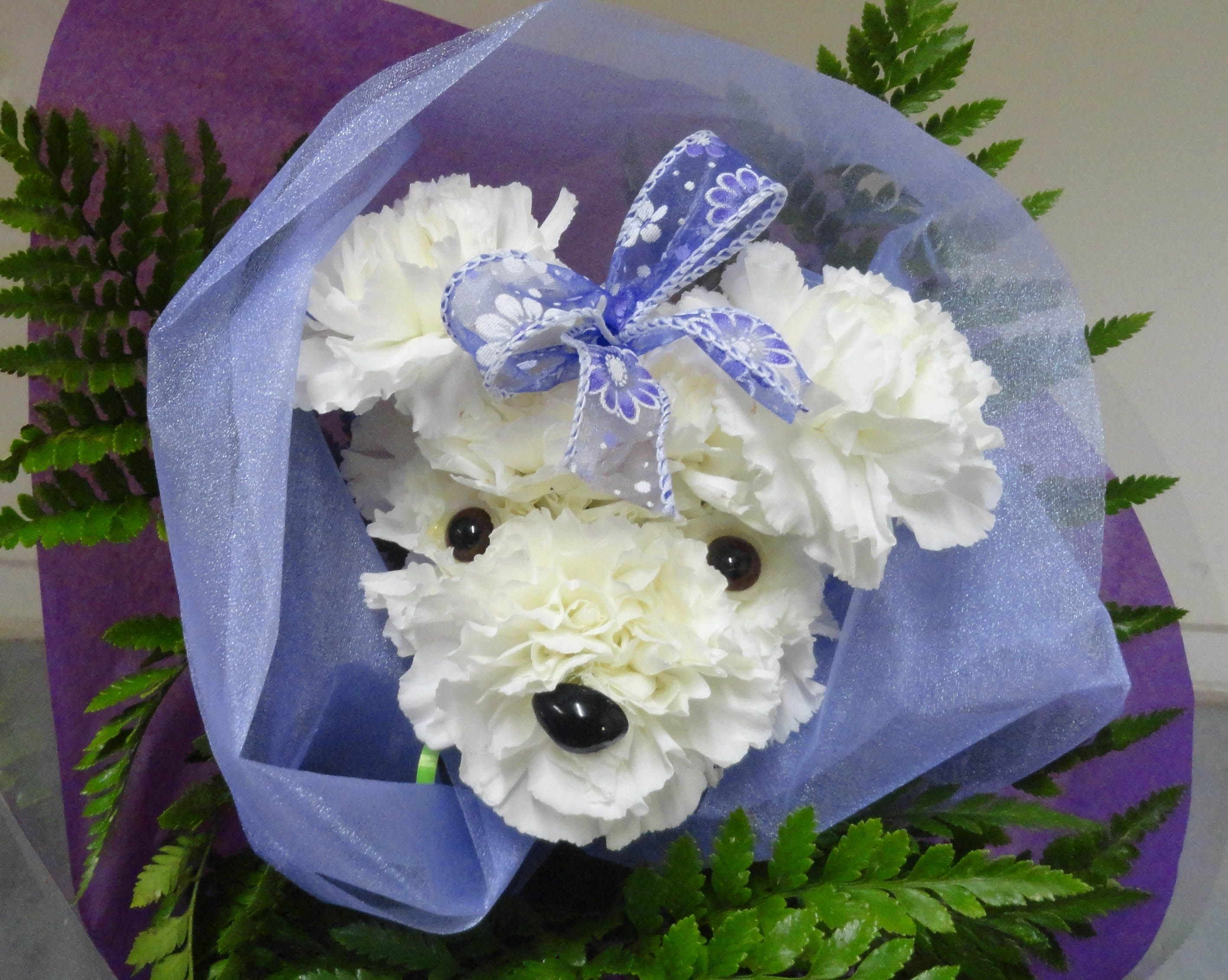 Puppy Carnation Arrangements Flower