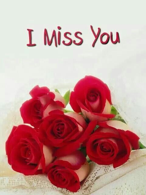 Miss You Red Rose Images