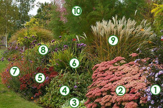 Massif de vivaces l 39 automne en majest sc nes de jardins jardin pinterest massif de - Massif de fleurs vivaces ...