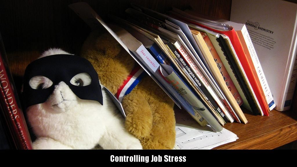 More time is spent working in the average person's life than in doing any other activity - except maybe sleeping. Work tasks are usually combined so that workers are dealing with multiple... http://mindbodyhealthy.org/1037/controlling-job-stress/  #Jobstress, #Stress