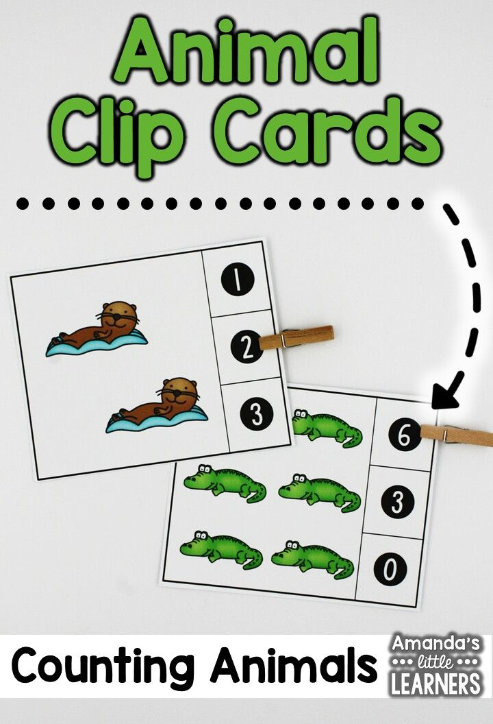 Count and Clip Cards - Animals Count, Formal assessment and Students - formal assessment