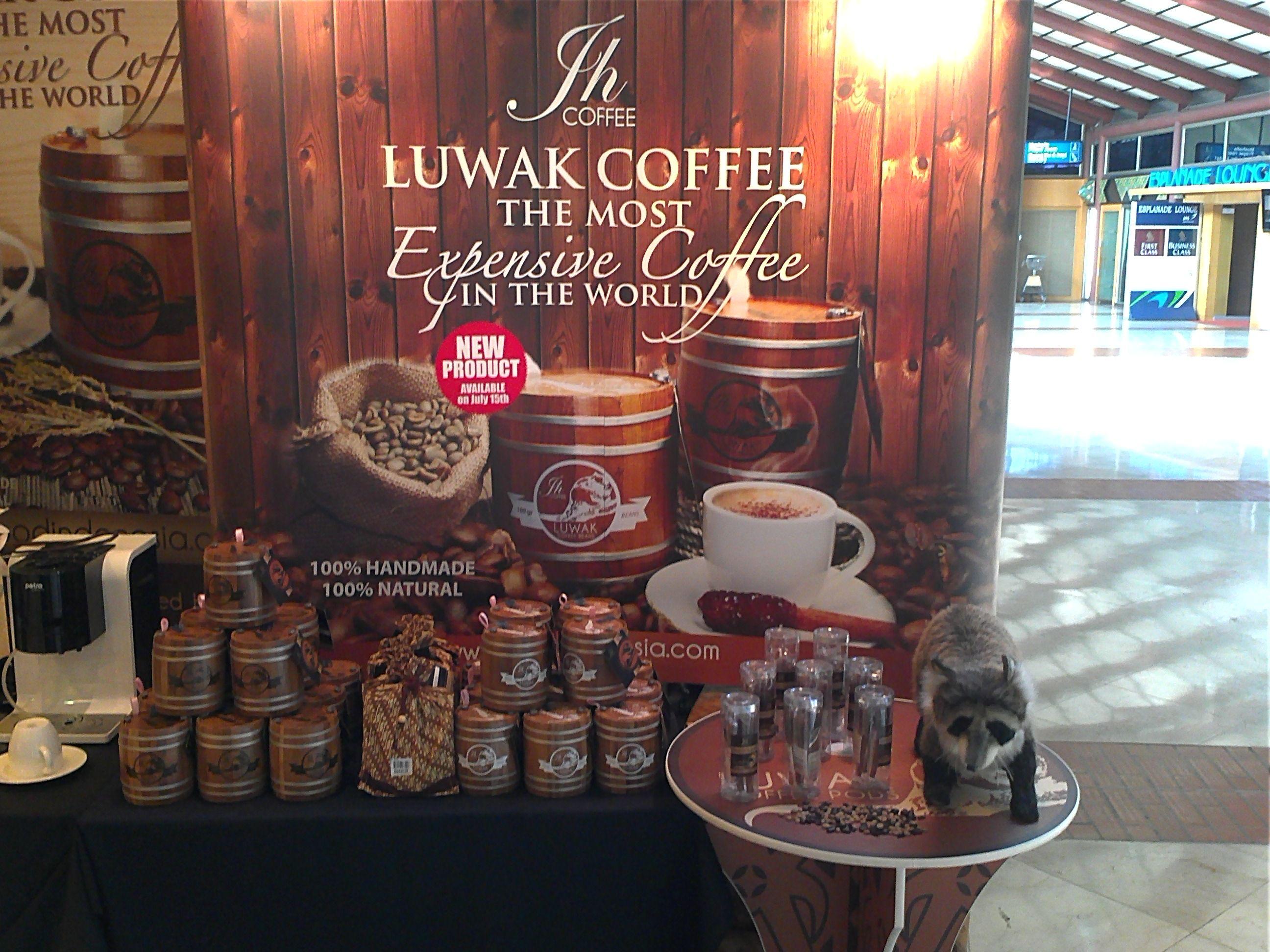 Coffe Luwak Indonesia... Coffee, Kopi, Coffee tea