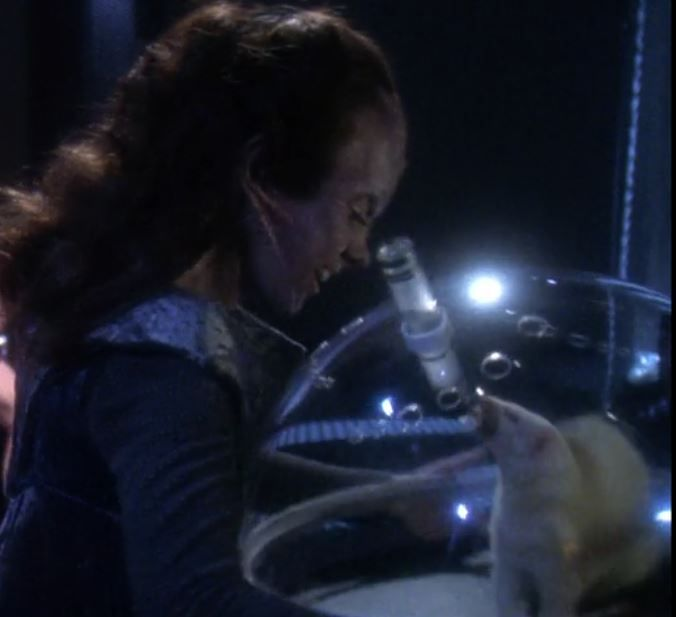 A Cardassian Wompat Is Not A Tatooine Womp Rat And It S A Helluva Lot Cuter Than A Cardassian Vole Star Trek New World Strange They are feared by settlers everywhere due to their aggressive behavior and the deadly disease that they carry that is. a cardassian wompat is not a tatooine