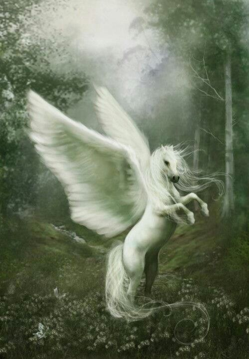 Here is my Pegasus  I named her καλός  It means beautiful in