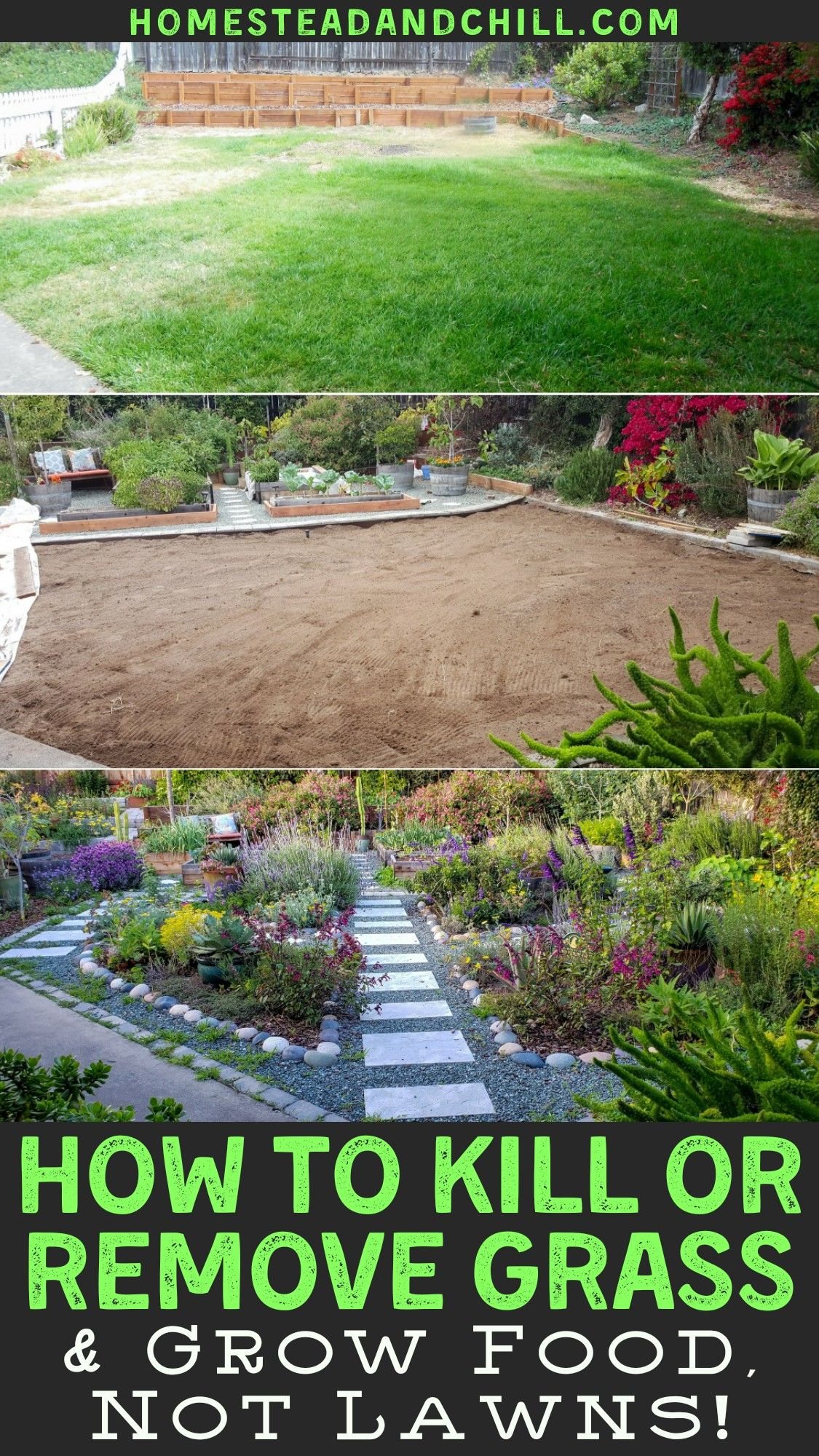 How To Get Rid Of Grass Growing In Ground Cover