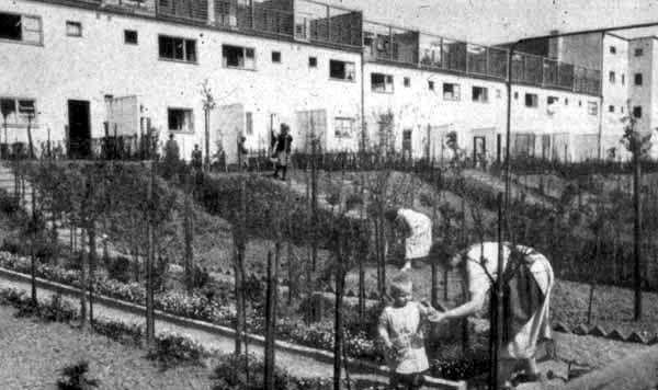Frankfurt, Lage- und Gartengestaltungsplan der Siedlung Heddernheim, Leberecht Migge, Ansicht, Anfang dreißiger Jahre