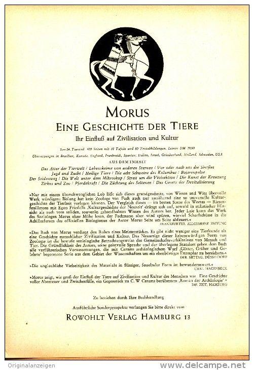 Original-Werbung/Inserat/ Anzeige 1953 - 1/1-SEITE - MORUS-EINE GESCHICHTE DER TIERE/ROWOHLT-VERLAG  - ca. 230 X 160 mm