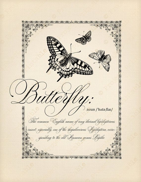 Butterfly Dictionary Definition Butterflies Printable Image Transfer - Great for wood, fabric, canvas, burlap - Instant Digital Download - Downloadable Scrapbooking and Digital Collage Graphics - Vintage Inspired Clip Art by PROJECT PRINTABLE
