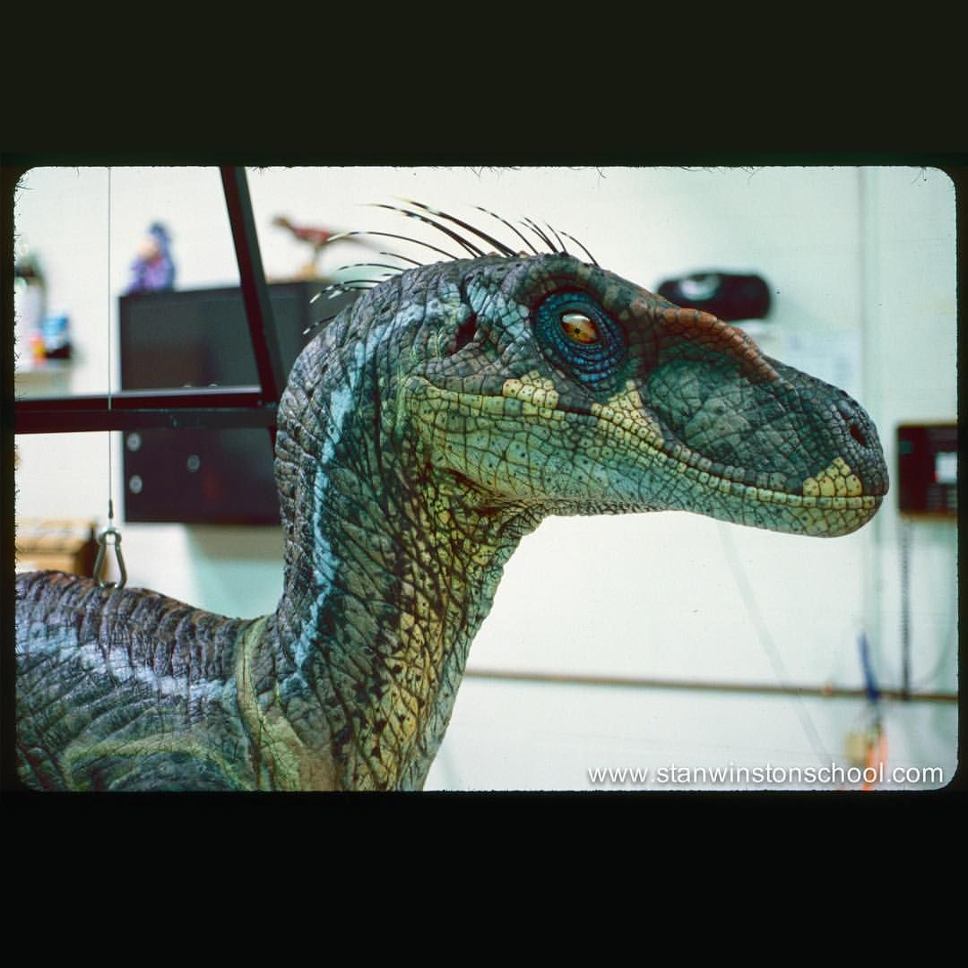 stanwinstonschool Choose your all-time favorite Velociraptor from Jurassic Park 1-3. . A: Jurassic Park  B: The Lost World: Jurassic Park  C: Jurassic Park III . Raptors created by Stan Winston Studio. #jurassicparkworld
