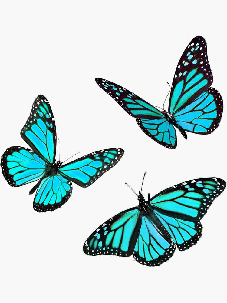 Monarch Butterfly Sticker Pack Blue Sticker By Katie S Stickers In 2021 Butterfly Art Drawing Butterfly Painting Butterfly Art