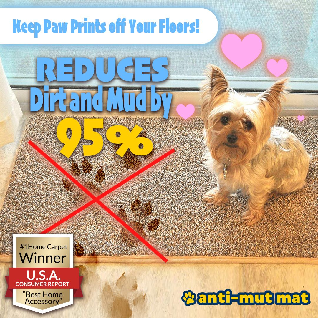 1 Anti Mud Mat Winner Best Home Utility 2019 Mud Mat Dog