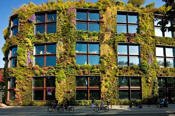 A living wall bursts with vegetation at Paris\'s Musée du Quai Branly ...
