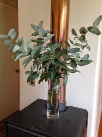La Casa de la Laguna: Eucaliptus en vez de flores