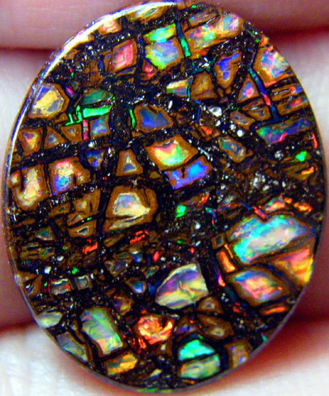 Yowah Opal Stone Collection 12 95 Cts Ysc Minerals And Gemstones Stones And Crystals Mineral Stone