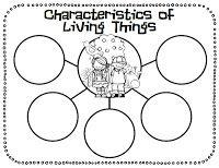 Living Thing Bubble Map Freebie {First Grade Garden