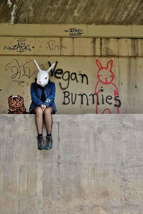 we love vegan bunnies #vegan #streetart #grafitti